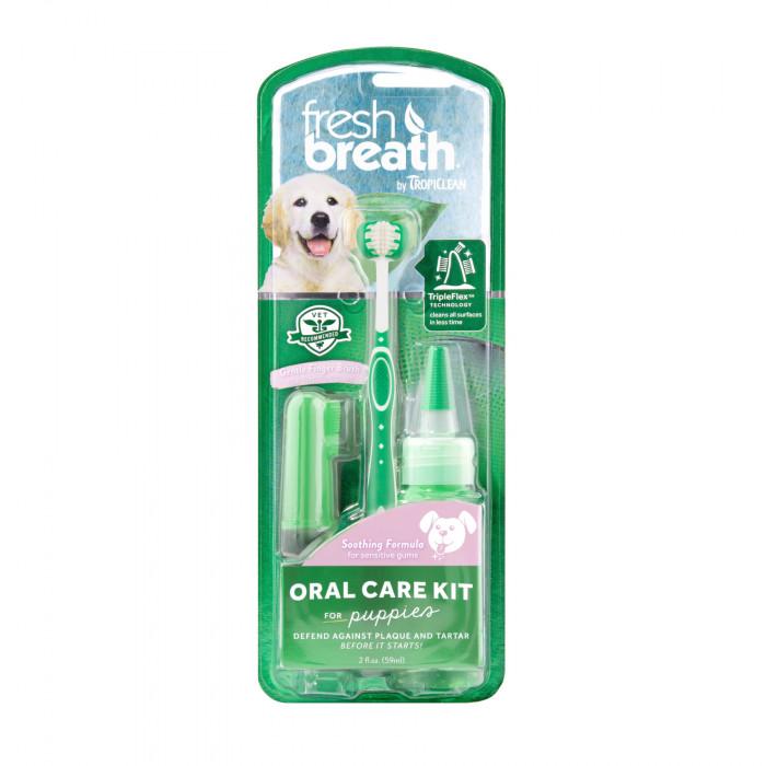 FRESH BREATH hammaste hoolduskomplekt, noorematele koertele