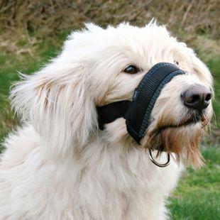 TRIXIE Намордник для собак 18-30 см, L размер