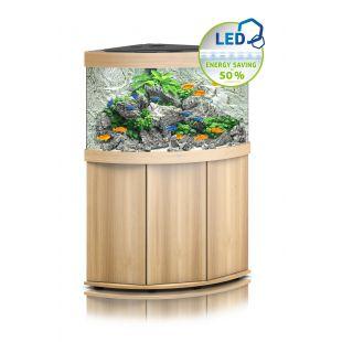 JUWEL LED Trigon 190 akvaarium, nurgeline 190 l, hele puit *SPEC.