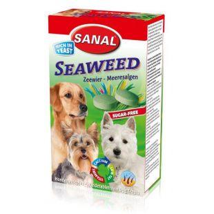 SANAL Dog Seaweed Кормовая добавка для собак с морскими водорослями 100 г