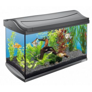 TETRA AquaArt akvaarium koos varustusega 60 l
