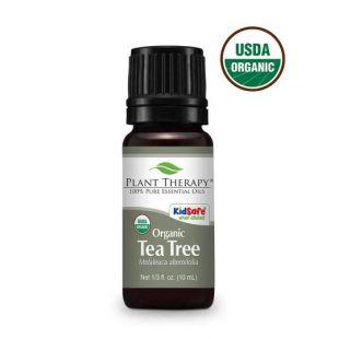 PLANT THERAPY натуральное эфирное масло чайного дерева 10 мл