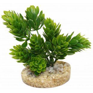 SYDEKO Magic Aqua Naturals Plastist taim 11 cm