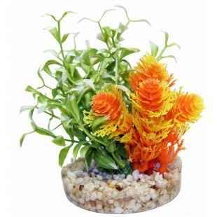 SYDEKO Magic Nano Garden Plastist taim 10 cm