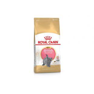 ROYAL CANIN Kuivtoit kassidele Kitten British Shorthair 400 g