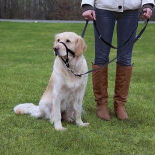 TRIXIE Намордник Top Trainer для собак 37 см, L-XL размер