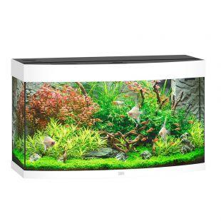 JUWEL LED Vision 180 аквариум белый 92x41x73 см
