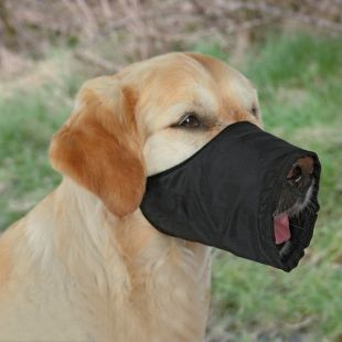 TRIXIE Suukorv koertele M: koonu ümbermõõt – 24 cm, kaelarihm – 16–40 cm
