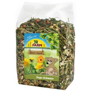 JR FARM Degus Feast корм для дегу 800 г