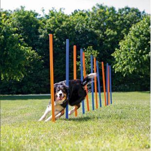 TRIXIE Agility Koera mänguasi 12 tk., 115x3 cm