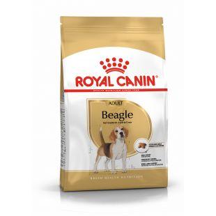 ROYAL CANIN Сухой корм для собак Beagle Adult 3кг