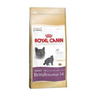 ROYAL CANIN Kuivtoit kassidele British Shorthair 2 kg