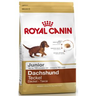 ROYAL CANIN Dachshund junior koeratoit 1.5 kg
