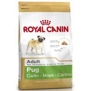 ROYAL CANIN Pug koeratoit 1.5 kg