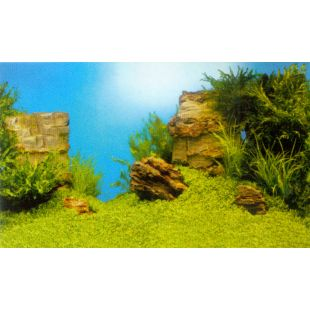 JUWEL Juwel Poster Фон для аквариума, двухсторонний XL двухсторонний 150см x 60см