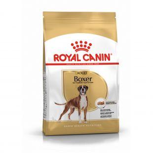 ROYAL CANIN Boxer Adult, täisväärtuslik toit koertele 12 kg