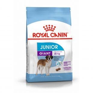 ROYAL CANIN Giant Junior, täisväärtuslik toit koertele 15 kg