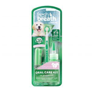 FRESH BREATH hammaste hoolduskomplekt, noorematele koertele Roheline