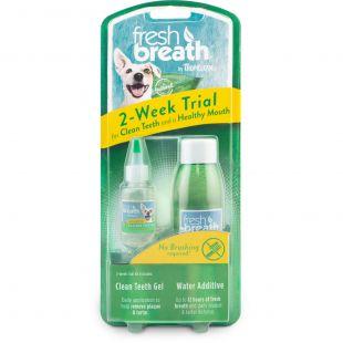 FRESH BREATH Fresh Breath комплект для ухода за зубами, пилот x 1
