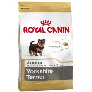 ROYAL CANIN Kuivtoit koertele Mini Yorkshire Junior 1,5 kg