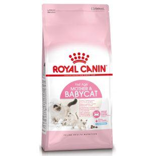ROYAL CANIN Kuivtoit kassidele Kitten 4 - 12 months 2 kg