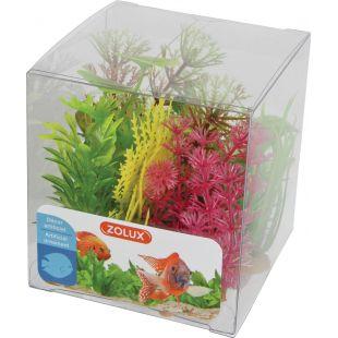 ZOLUX Taim akvaariumi kastitaimedele X6, 9 cm