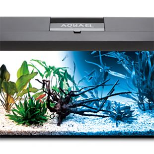 AQUAEL LEDDY SET DAY & NIGHT ristkülikukujuline akvaarium koos varustusega must, 41 x 25 x 25 cm