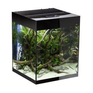 AQUAEL Прямоугольный аквариум GlOOSY SET CUBE черный, 50x50x63 см, 132 л