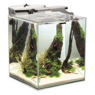 AQUAEL Akvaariumi krevettide komplekt DUO valge, 49 l, 35x35x40 cm