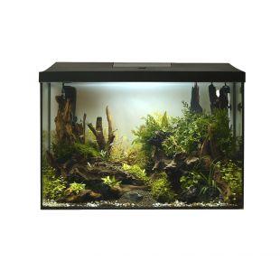 AQUAEL Akvaariumikomplekt LEDDY XL päev ja öö must, 25 l, 41x25x35 cm