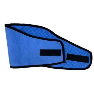 JOYEN Ошейник-жилет для домашних животных охлаждающий, размер L, синий