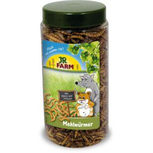 JR FARM JR Mealworms näriliste söödalisand 70 g