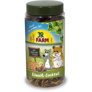 JR FARM protein cocktail näriliste toidulisand 75 g